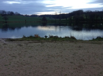 Beautiful lake on the campsie